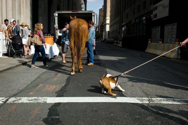 Street Photography By Karl Edwards