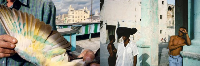 Alex Webb Workshop In Miami
