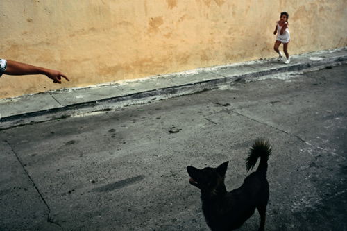 David Alan Harvey Cuba