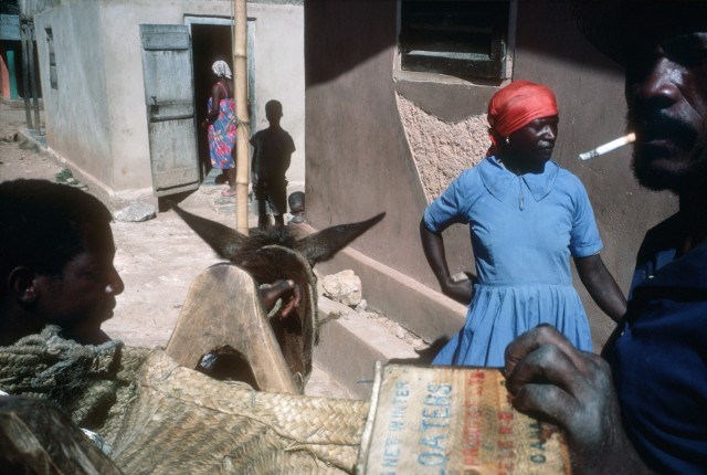 Alex Webb Haiti