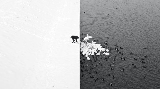 StreetFoto Winners - Single Image - 3rd Place