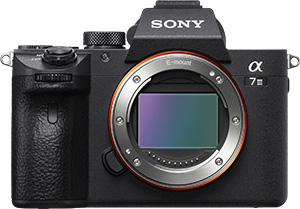 Sony A7iii Street Photography Review - And It's Full Frame